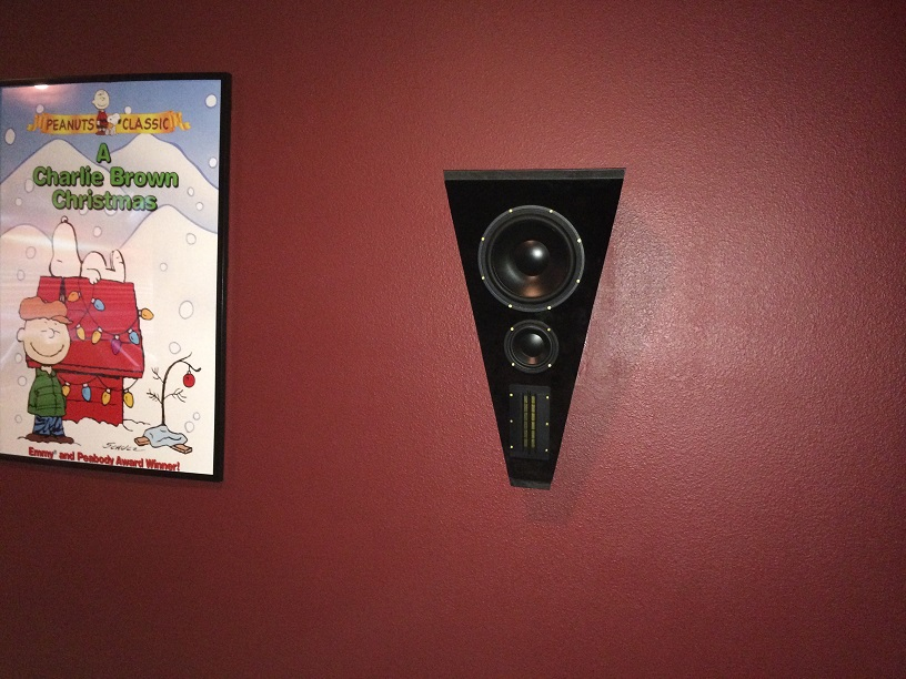 Home Theater Build #1-017.jpg