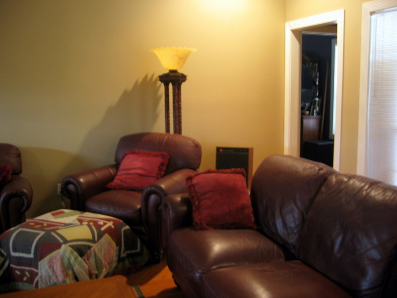 Recommendations for Room Treatment Needed-Please Help!-110_1056.jpg