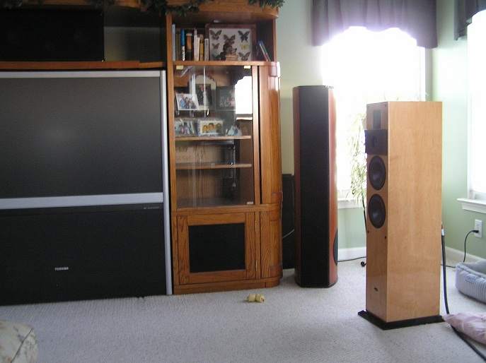 Help needed for treating McMansion for stereo-2.jpg