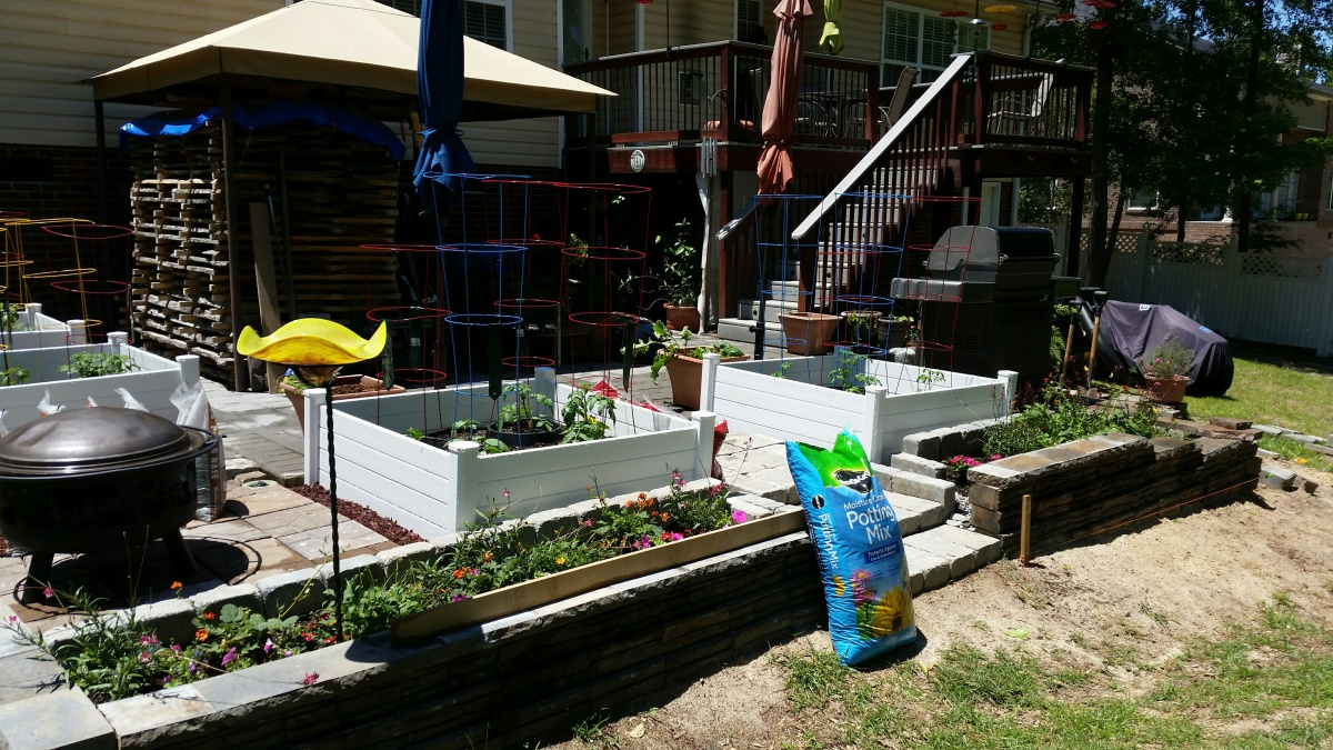 DIY Projects: Non-Audio Related-20170514_view-yard.jpg