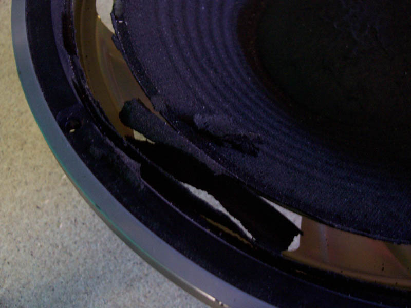 Repairing speaker surrounds.-damagedsurround.jpg