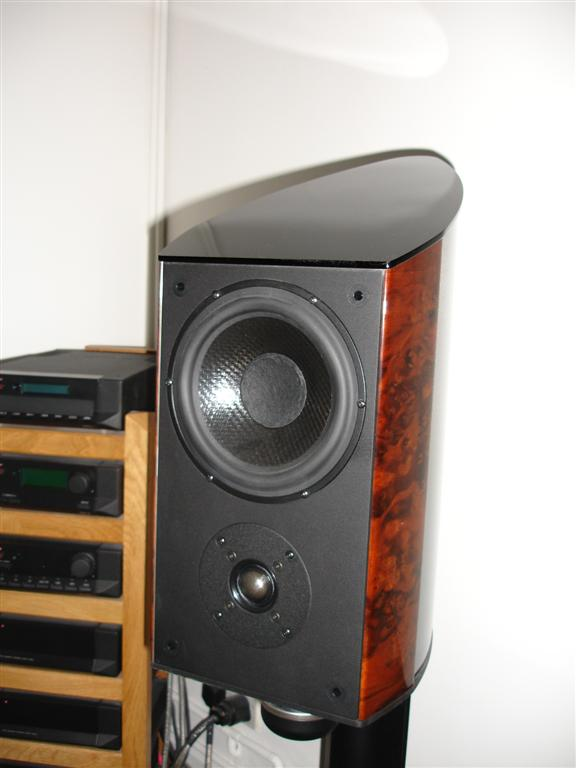 A ZONE 2 Question, and a Request for Opinions on 3 or Multichannel Amps...-dsc01228-20-28large-29.jpg