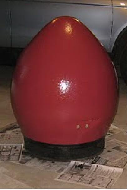 -egg-back.jpg