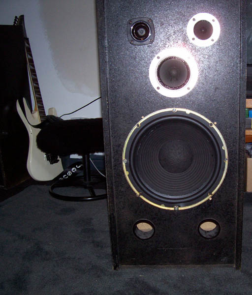 Repairing speaker surrounds.-finished.jpg