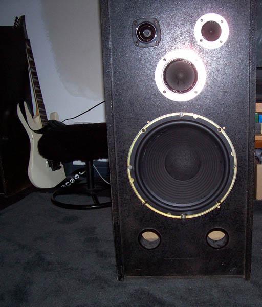 Repairing speaker surrounds.-finished.jpg
