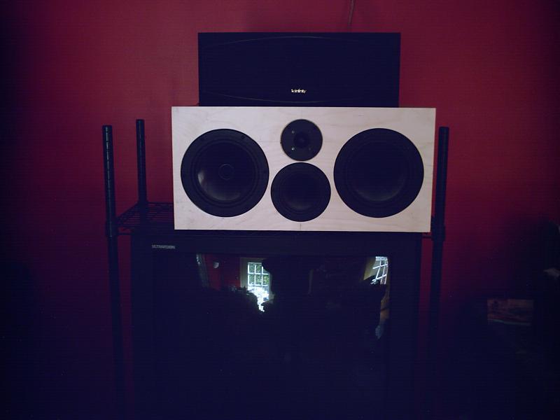 DIY Speaker Project preparation...-home-t-004.jpg