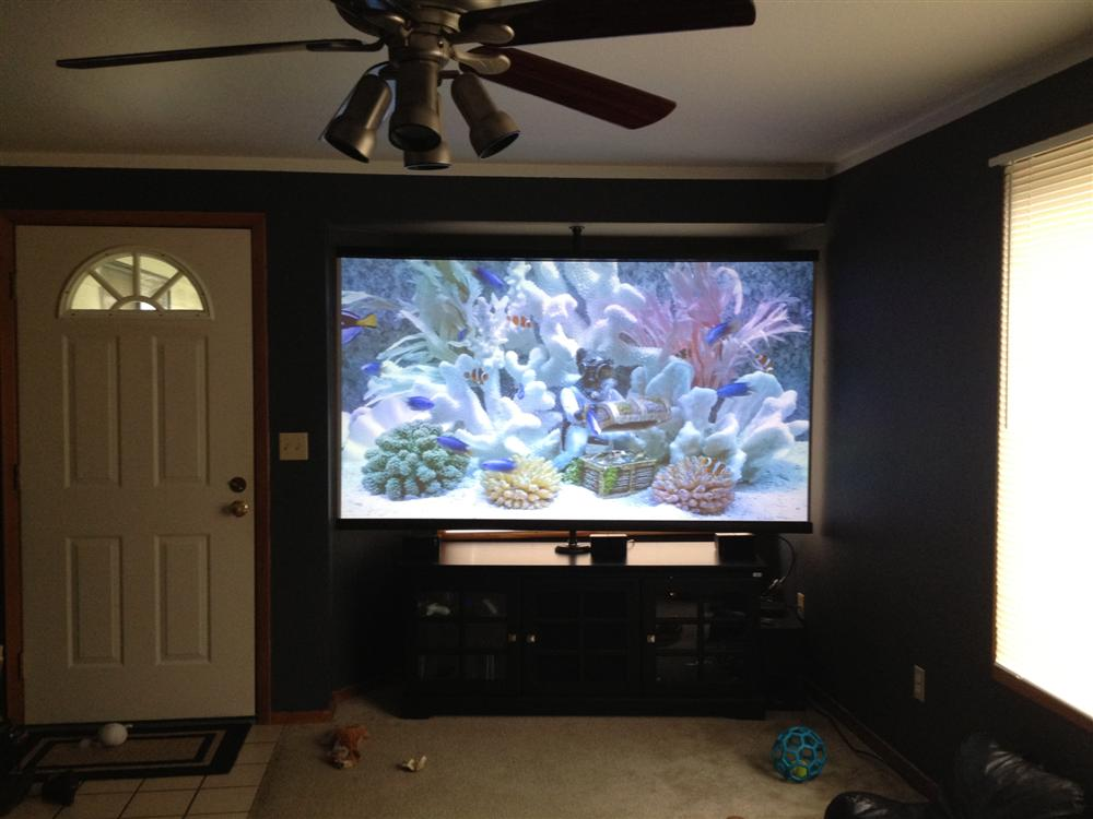Best Screen For Optima Hd33 Home Theater Forum And