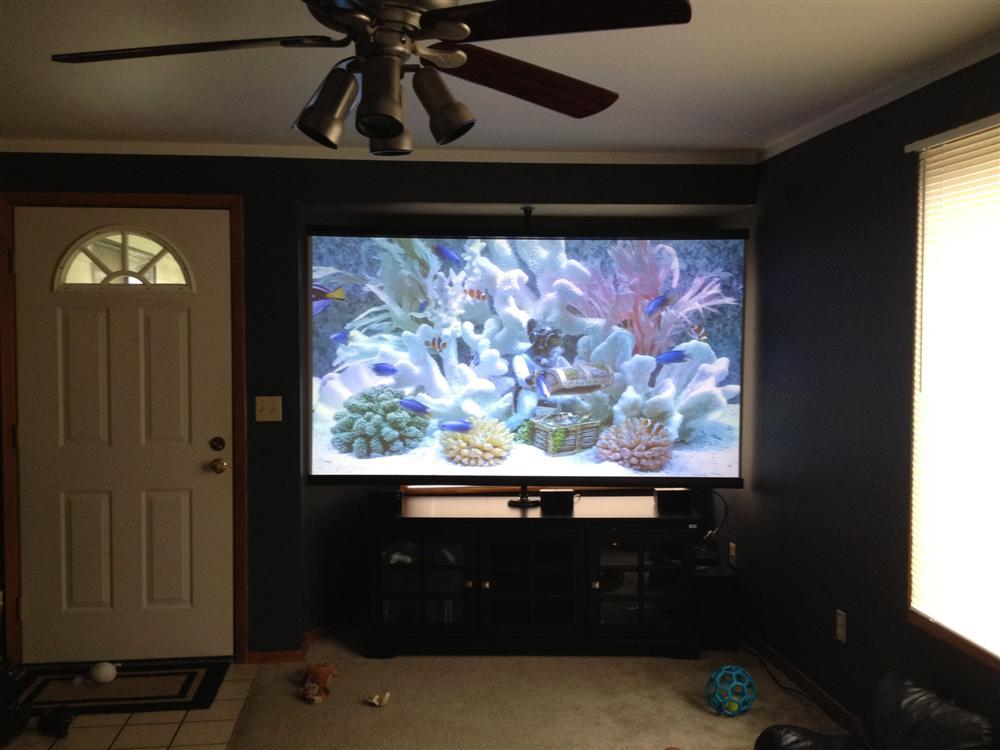 Best screen for optima HD33-home-theatre-projector-011-custom-.jpg