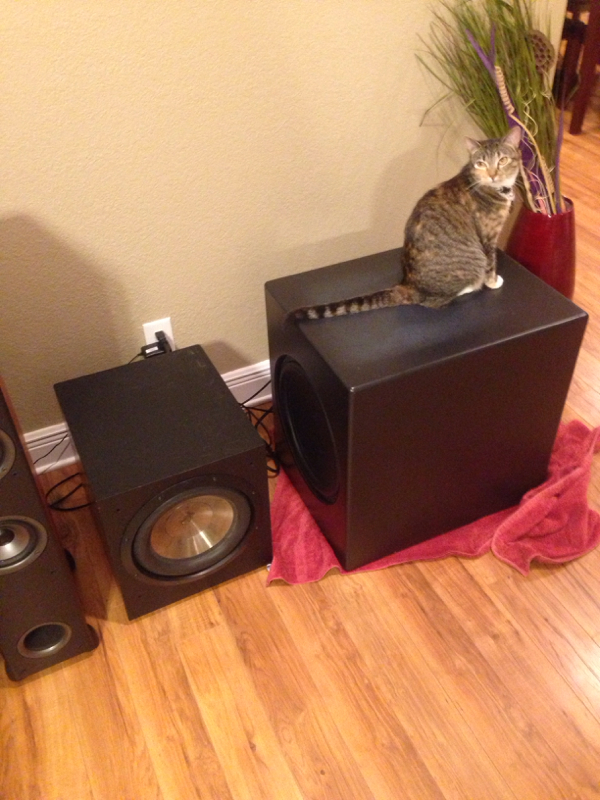 Reaction Audio - any feeback/reviews-image-1285071123.jpg