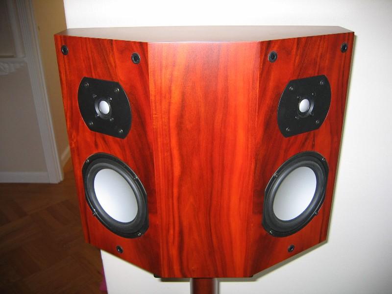 FS: ELT DPA (Dipole) Surround Speakers in Rosewood-img_6467.jpg