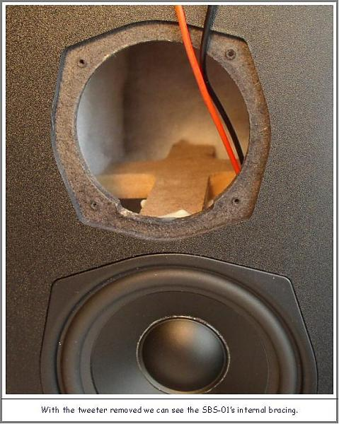SVS SBS/SCS-01 Home Theater Ensemble: Good Things Come in Small Packages-internal-bracing-detail-.jpg