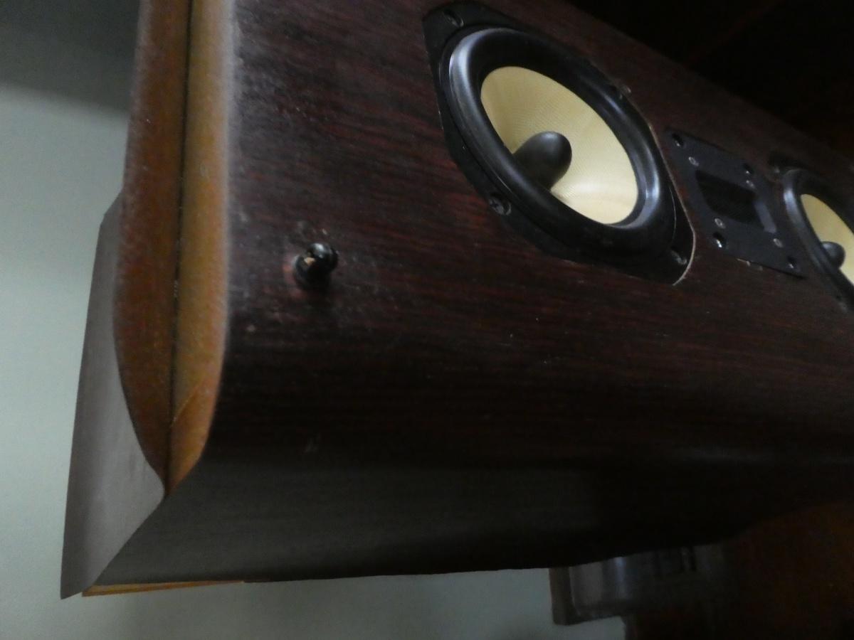 Removing old veneer-p1020077.jpg