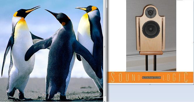 Crossovers - where to start?-penguinn.jpg