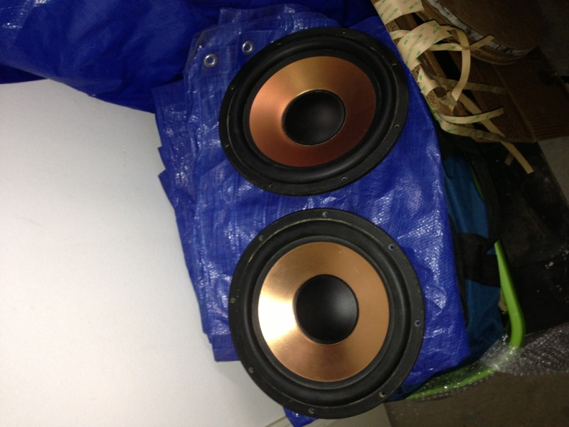 Need help with PR's for Klipsch 12