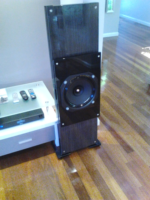 Open baffle speakers on a budget-pic_0210_039.jpg