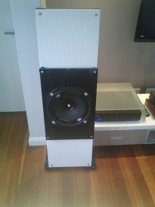 Open baffle speakers on a budget-pic_0217_051.jpg