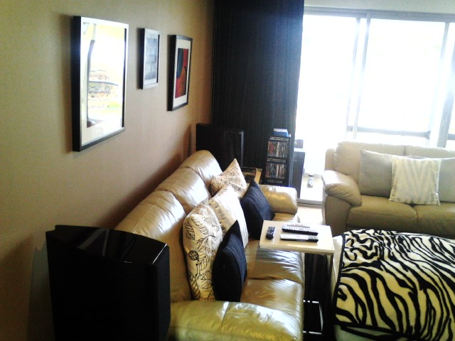 Harry's Multi use theatre room on a budget-pic_0804_124.jpg