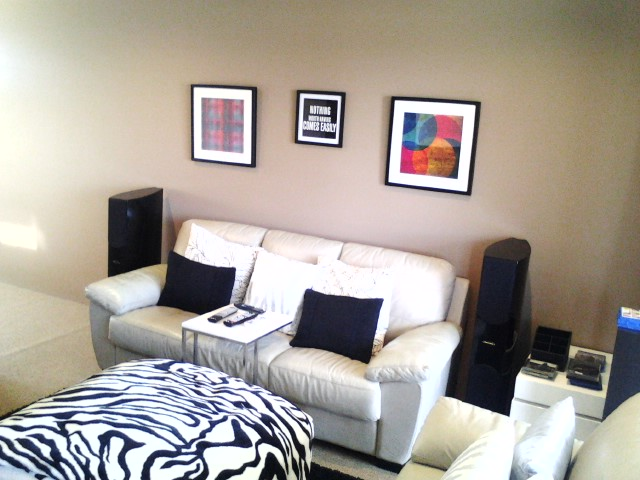 Harry's Multi use theatre room on a budget-pic_0804_126.jpg