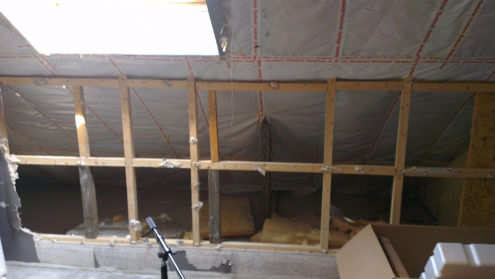 help with further construction off cinema / music room sloped front and rear wall-ply.jpg