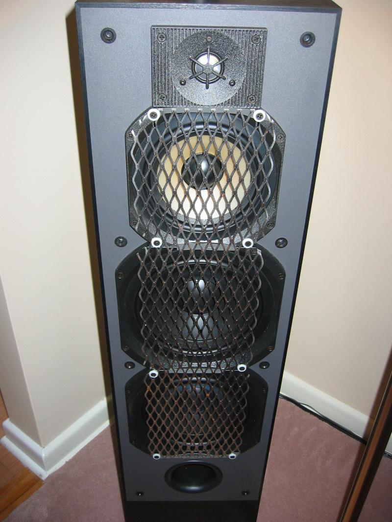 Oh No, My 2 year old did it again!-rear-speaker-screen.jpg