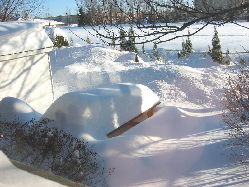I miss summer-snowy-bar.jpg