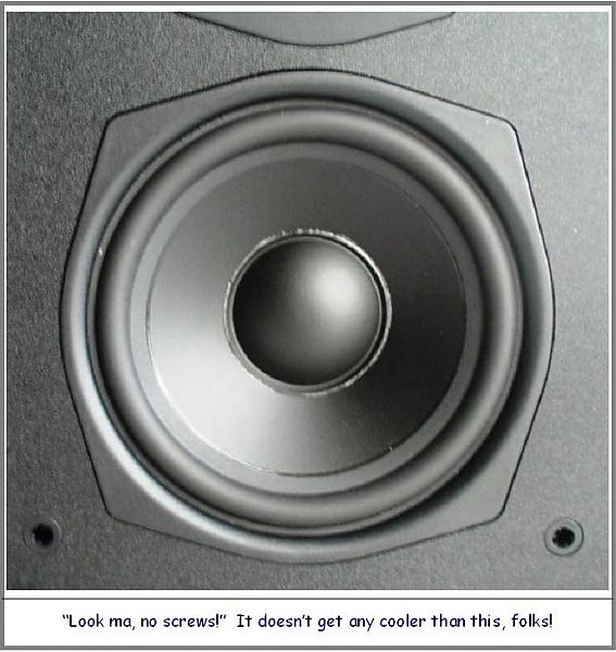 SVS SBS/SCS-01 Home Theater Ensemble: Good Things Come in Small Packages-woofer-detail-.jpg