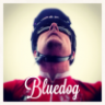 Bluedoggy